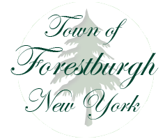 Town of Forestburgh